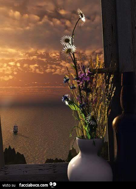 Mazzo di fiori sul davanzale della finestra che da sul mare - Fiori da finestra ...