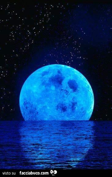 Luna Blu Gigante Sul Mare Di Notte Facciabucocom